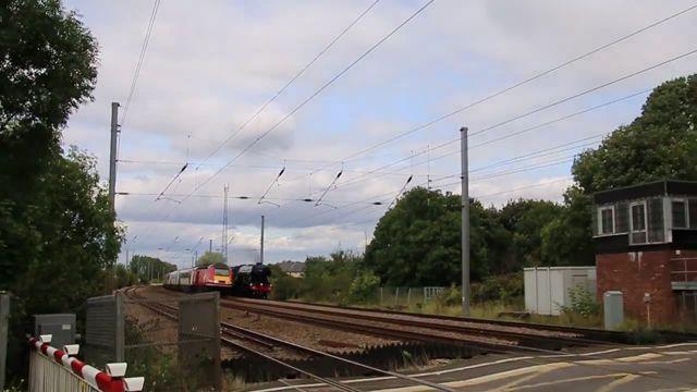 Un train trolle des ferrovipathes